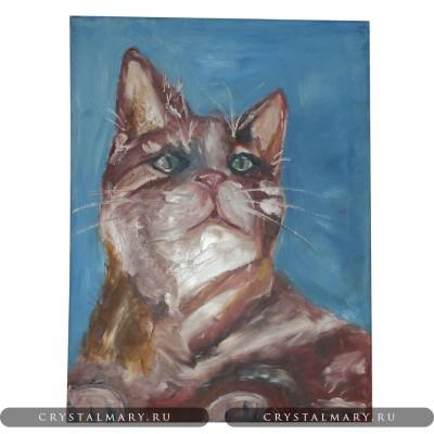 Картина маслом на холсте: Мудрый кот www.crystalmary.ru