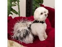 Платье для собак от Chien Coature с кристаллами Swarovski
